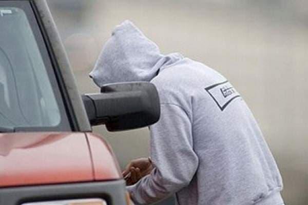 Автосканеровщики украли измашины автоледи 60 тыс. руб.