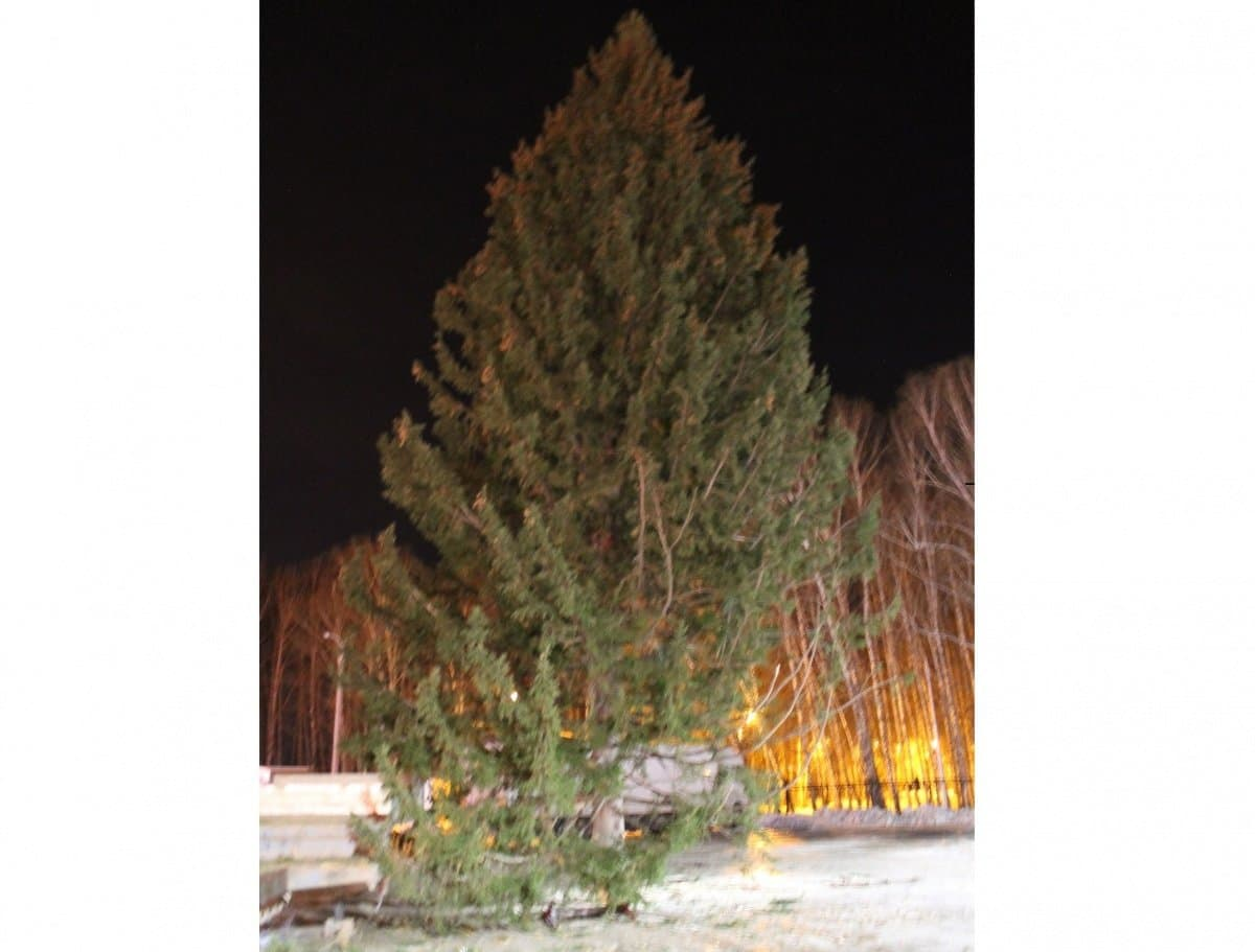 Еще одну елку установили вУфе