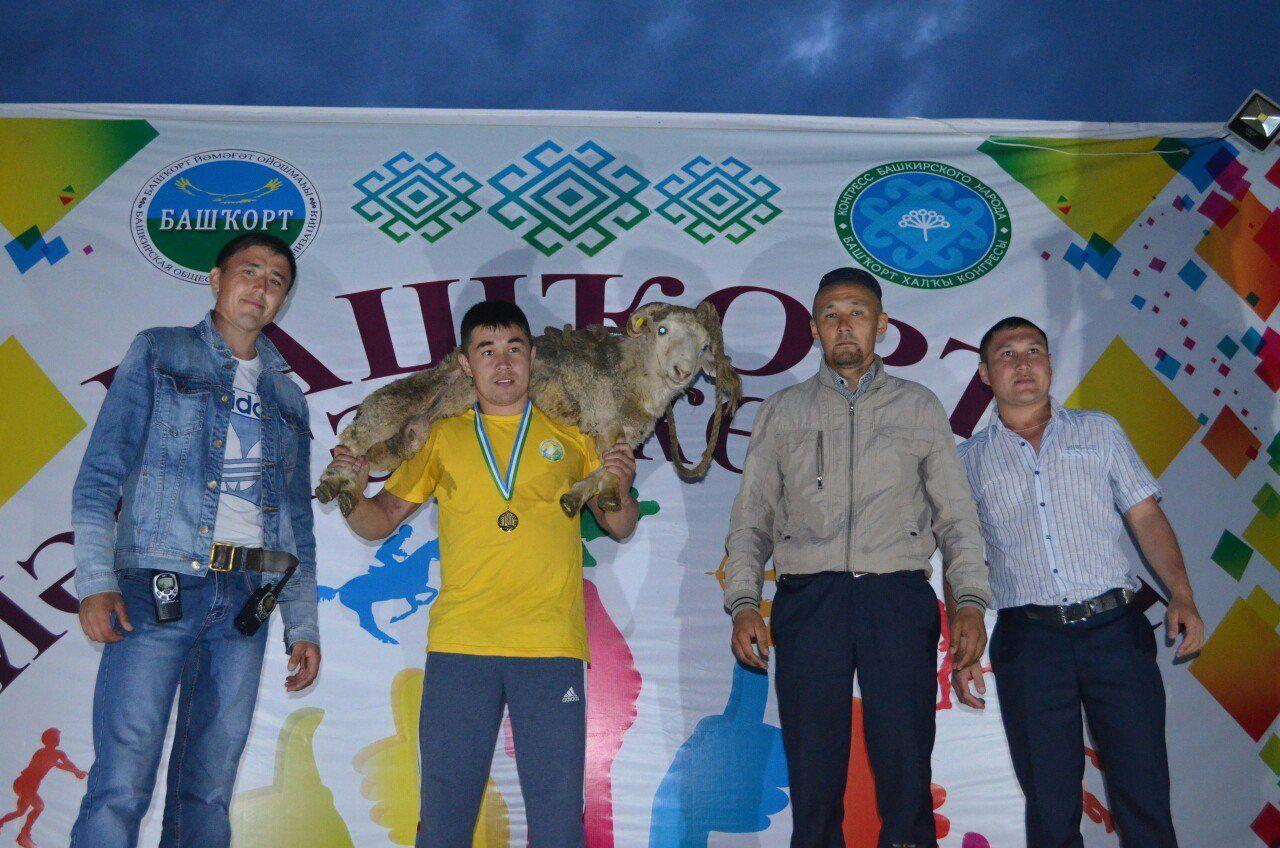Ульяновская область город димитровград новости