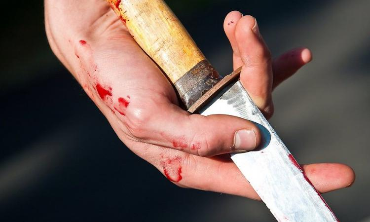 Гражданин  Чишминского района устроил резню впроцессе  пьянки