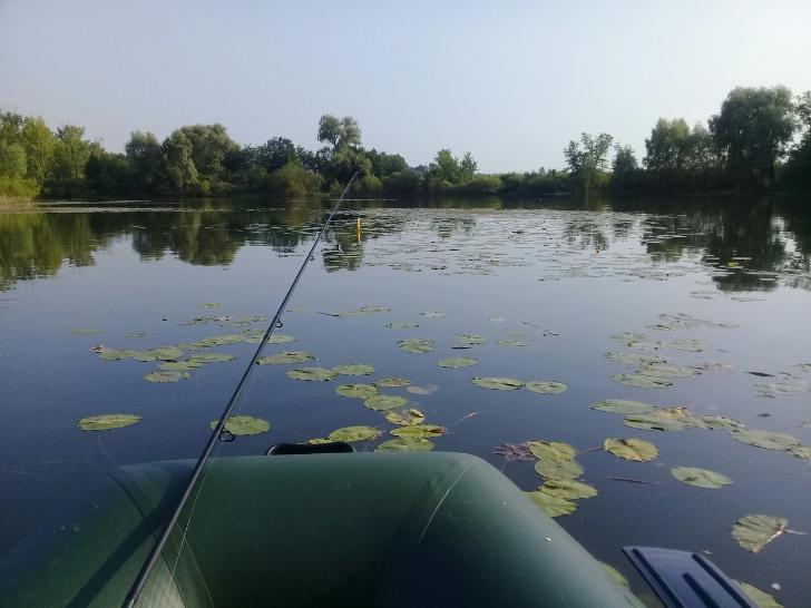 На крючке у закона: рыболовы Башкирии сообщают о невозможности свободно рыбачить на озерах республики
