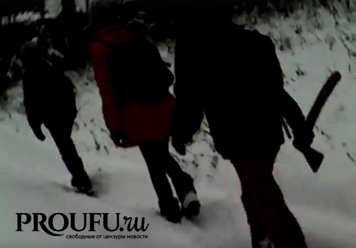 Дети вБурзянском районе ходят вшколу стопорами после появления волка