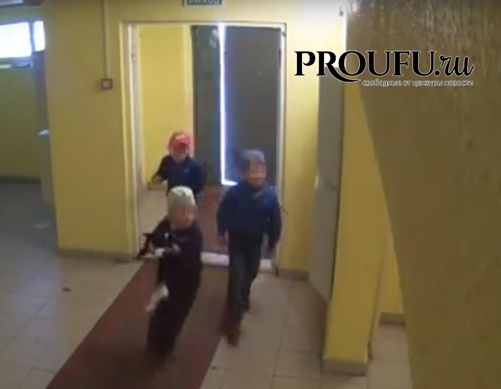 ВУфе проверяют видеозапись, накоторой дети скидывают кота смногоэтажки