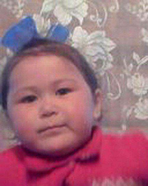 ВБашкирии пропала двухлетняя девочка