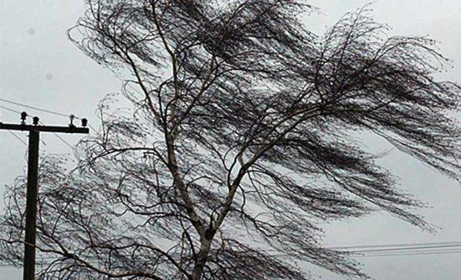 МЧС предупреждает оштормовом ветре вБашкирии