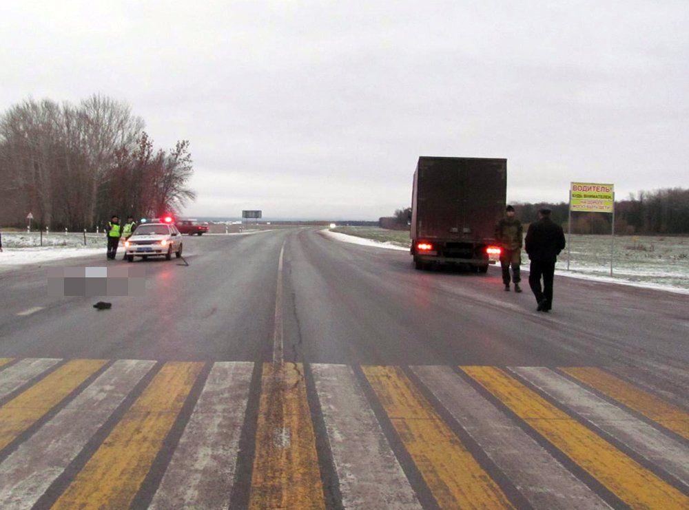 ВБашкирии 40-летний пешеход умер под колесами фургона