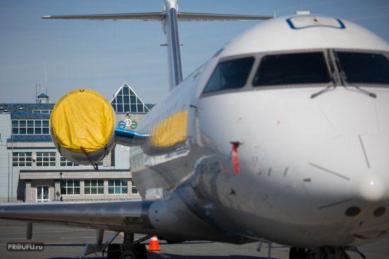 Самолет несмог сесть вШереметьево из-за брачных игр 2-х лис
