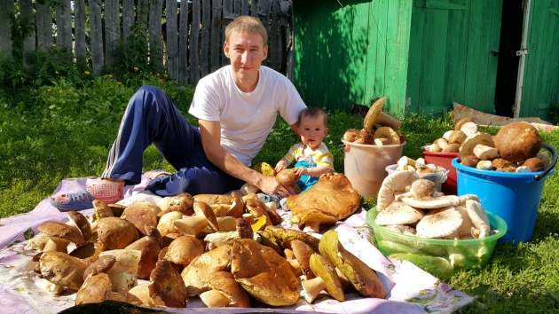 Уфимец собрал в башкирских лесах гигантские грибы